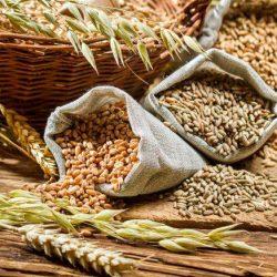 I cereali integrali. Quali sono e i loro benefici sull'organismo