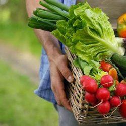 Perché mangiare biologico