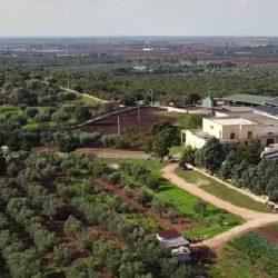 L'Azienda agricola biologica Querceta